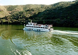Cruises and other boat trips on the river Douro